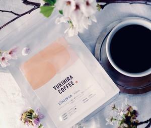 夜のコーヒー豆 〜エチオピア コンガ〜