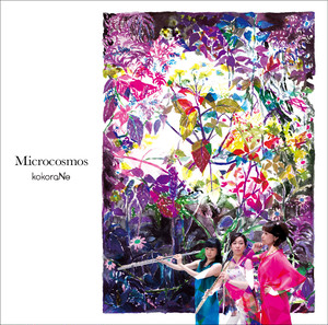 CD 2nd.ALBUM「Microcosmos」