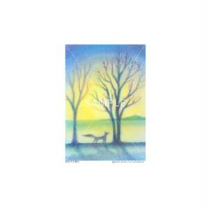 【選べるポストカード3枚セット】No.125 真冬の夕暮れ