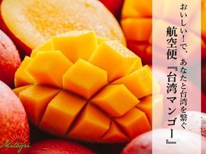 【完売御礼】【2箱同一住所への配送でお得】【Mitagri】台湾マンゴー(5kg 10~14玉)×2箱(送料込)