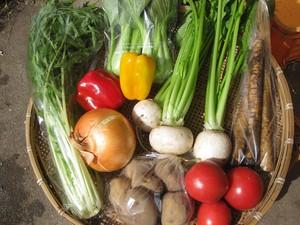 ふるさと納税でも大人気! お野菜BOX 2020野菜の栄養価コンテスト・グランプリ!