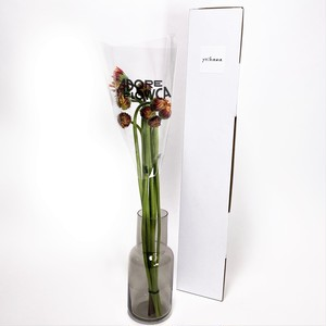 蕾ガーベラ10本 開花の魅力(ADORE FLOWCA×よいはな)