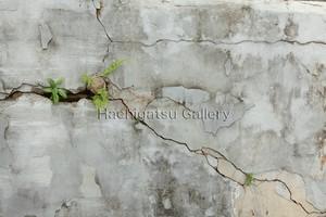 【A3サイズのパネル】壁の水墨画