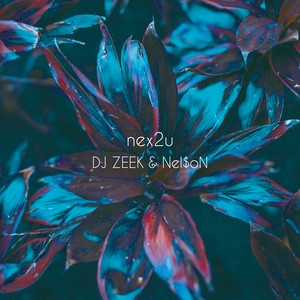 Nel$oN & DJ ZEEK - nex2u