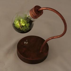 Y様オーダー分 bulb terrarium mini