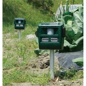 ソーラー充電式 害獣撃退器 【グリーン】 幅17cm フラッシュライト 威嚇音 防滴仕様  〔農園 農業 家庭菜園〕