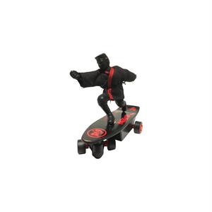 Kung fu Skateboarder