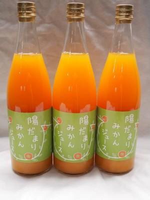 陽だまりファーム 三ヶ日青島みかんジュース 720ml 3本セット