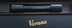 ヴァルナミニ水槽用 M 約15cm(水層:500リットル迄OK)