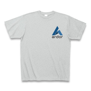 Ardor T-shirt (Gray/small logo)