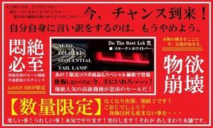 OUTLET【数量限定】 スモーク×ホワイトバーLEDシーケンシャルテール