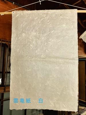越前和紙 雲竜紙 白