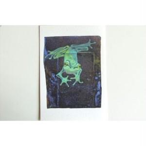 月蛙 ポストカード 『光と影』 10006