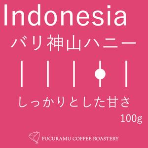 インドネシア バリ神山ハニー【フルシティ】200g