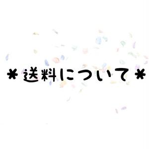 *送料について*