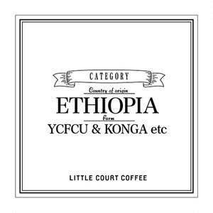 浅煎り/エチオピア/KONGA農協他/ナチュラル/100g