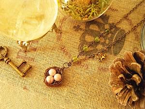 インカローズの卵が可愛い♪ 鳥の巣ネックレス