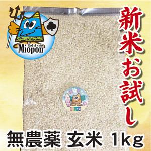 【無農薬】玄米ヒノヒカリ1kg 大分県産・日田よりお届けします!