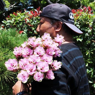 <お花のつくり手 応援> クルクマを飾ろう、贈ろう。