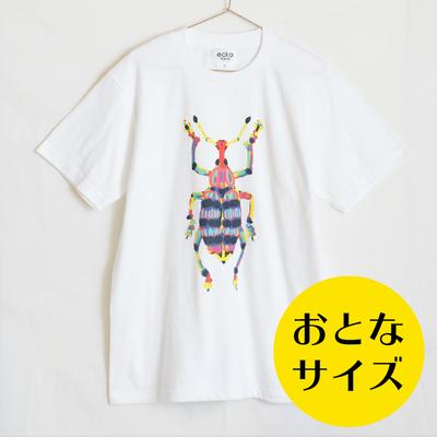 おとなサイズがオススメ!昆虫好きデザイナーが作る昆虫Tシャツのご紹介!