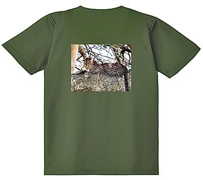 GLIMMER グリマー ドライTシャツ 4.4oz (メンズ) アイビーグリーン レオパード