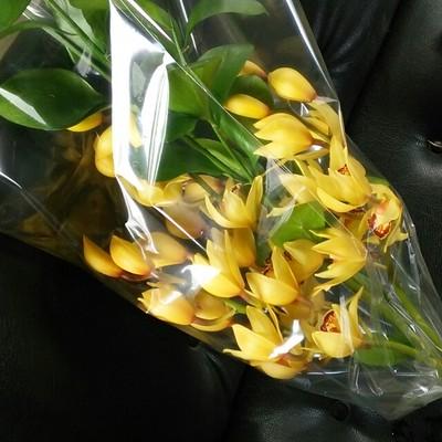 お正月は最高にハッピーなおもてなしを。ゴールドが輝くシンビジュームの生け花はいかが♡