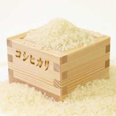精米したての米が美味しい理由とは??