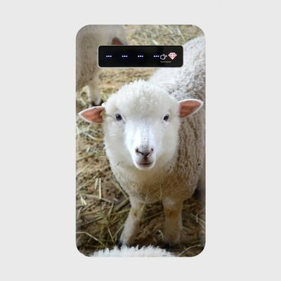 お気に入りの動物写真で作った、モバイルバッテリー。スマホのお供にお連れ下さい。