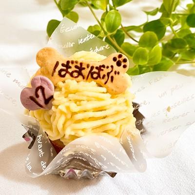 飼い主様も一緒に食べられる☆犬のお誕生日ケーキ