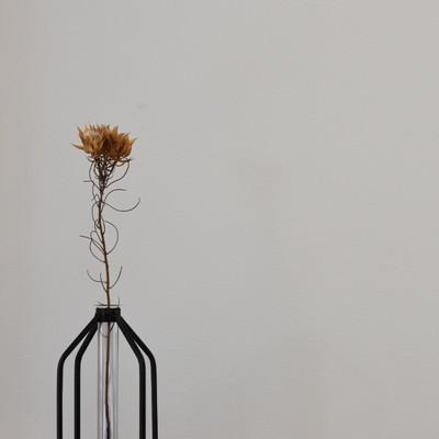 無駄がない、だから美しい。 貴方のお部屋を上品にしてくれる、イチオシのフラワーベースをご紹介します。