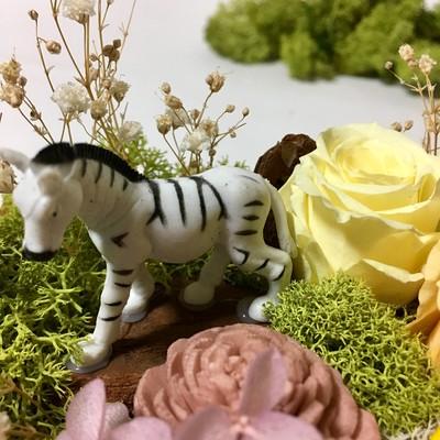 アニマルの森!かわいい動物園をご自宅に!プリザーブドフラワーアレンジメント