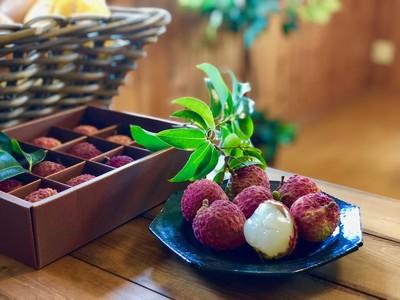 大粒の果肉から果汁が溢れ出す「糸島生ライチ」