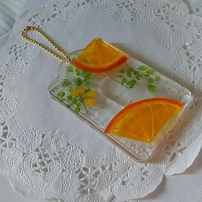 今人気の押しフルーツを使いパスケースを作成致しました。