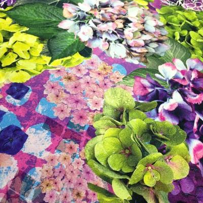 部屋に飾った一輪の花が、愛と勇気をくれるように。紫陽花の美しさを詰め込んだ花押しスカーフ◎