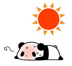 猛暑の大敵、熱中症、冷房症、夏の冷え性、こむら返り、めまい、頭痛、のぼせを  解消する秘策とは?
