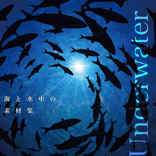 海と水中の素材集1