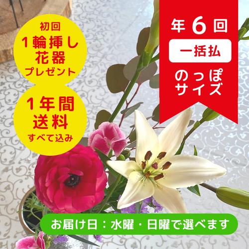 お花の定期便(隔月年6回・一括払い)のっぽサイズ