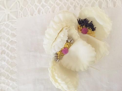 シルクのふたご花