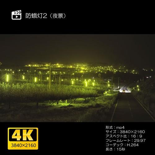 防蛾灯2(夜景)
