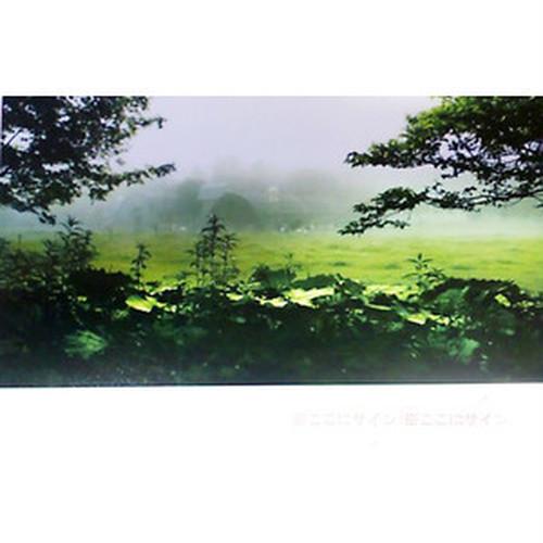 【Masahiro Narita】ポストカード