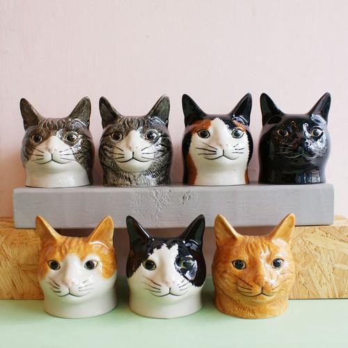 猫のEgg Cup