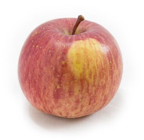 葉取らずサンふじ 10kg ご自宅用 | りんごの王様がさらに美味しく