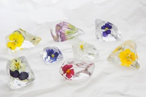 2014年4月納品Bセット 【花氷樹脂8個セット×3+氷8個セット×2】【20セット限定】