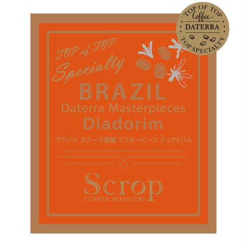 ブラジル ダテーラ農園 ディアドリム マスターピースオークションロット 中浅煎り (100g×5袋) 500g