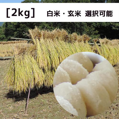 ☆新米☆【特別栽培米】信里シナイモツゴ保全米【2kg】2020年産