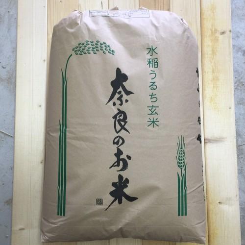 《新米》【玄米30kg】奈良県 矢田産 ひのひかり