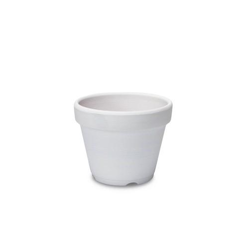 White Pot 5号