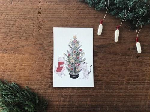 mayumi taniguchi クリスマスcat