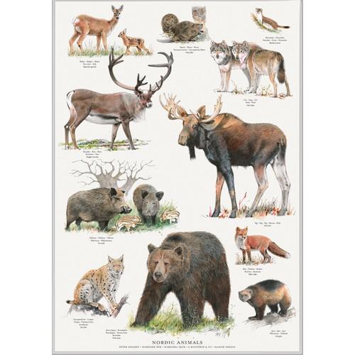 アート ポスター A2 サイズ KOUSTRUP & CO. - Wild animals of the North 北欧の野生動物