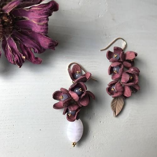 小さな花の種・ワインレッド